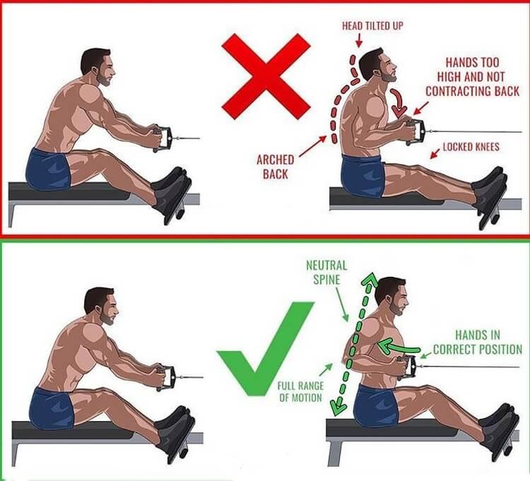 Buổi tập để phát triển cơ bắp dành cho cơ xô